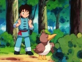 Pokemon S03E29
