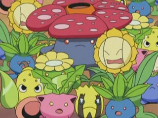 Pokemon S07E33