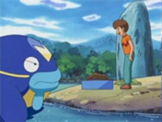 Pokemon S08E09