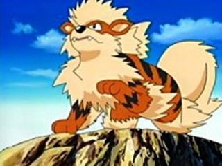 Pokemon S08E48