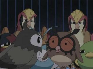 Pokemon S10E13