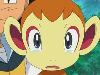 Pokemon S11E01
