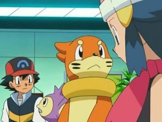 Pokemon S11E03