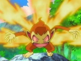 Pokemon S11E29