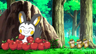 Pokemon S14E24