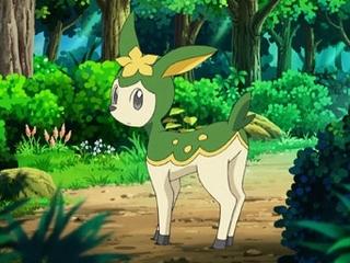 Pokemon S14E54