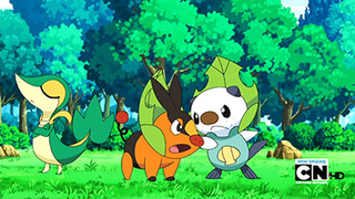 Pokemon S14E74