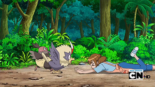 Pokemon S15E11
