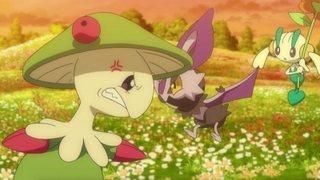 Pokemon S17E11