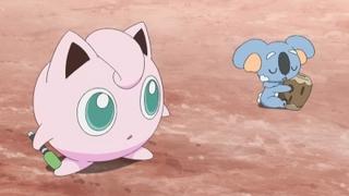 Pokemon S18E56