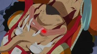 One Piece S17E48