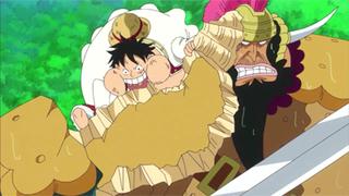One Piece S19E26