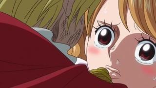 One Piece S19E31