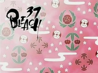Bleach S02E17