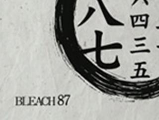 Bleach S04E24