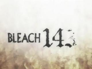 Bleach S07E12