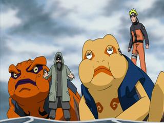Naruto Shippûden S05E17