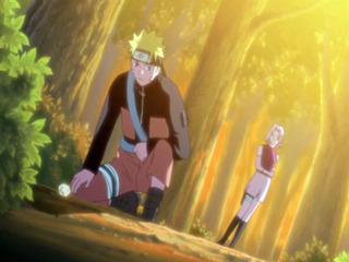 Naruto Shippûden S05E24