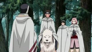 Naruto Shippûden S10E16