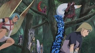 Naruto Shippûden S15E05