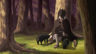 Naruto Shippûden S22E26