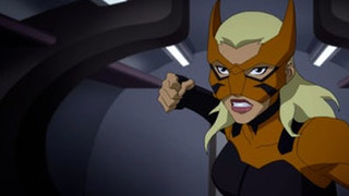 Young Justice S03E08